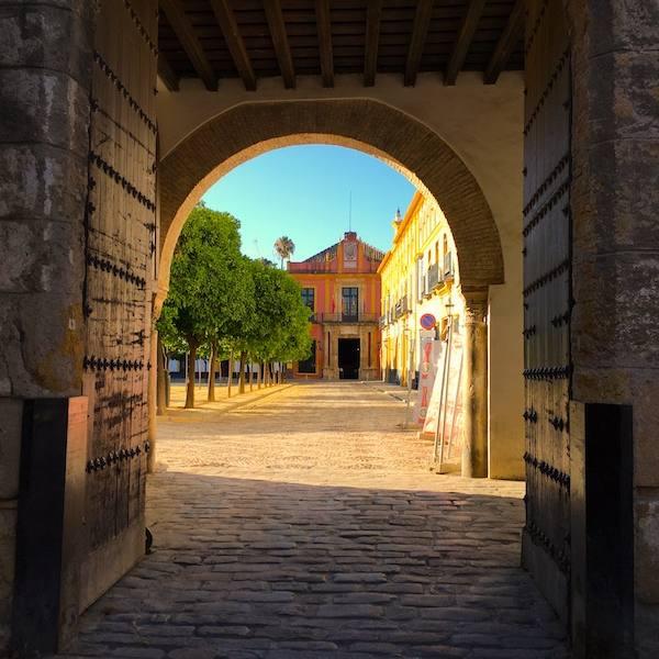 Visita privada Sevilla web